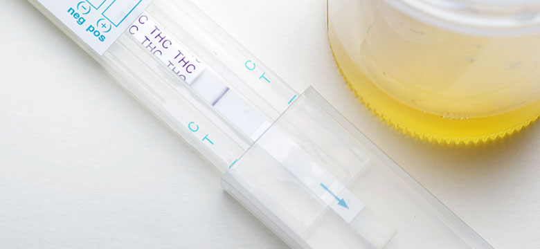 Can I Be Forced to Take a Drug Test in Pennsylvania Family Court